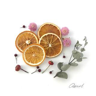 ドライハーブ&オレンジ / 花材 アソート #4(ドライフラワー)