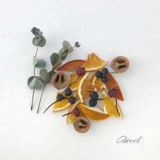 ドライハーブ&オレンジ / 花材 アソート #6(ドライフラワー)