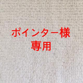 エーエヌエー(ゼンニッポンクウユ)(ANA(全日本空輸))のポインター様 専用(その他)