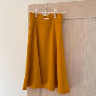 エディグレース(EDDY GRACE)のエディグレース 膝丈スカート(ひざ丈スカート)