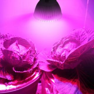 最新型 植物育成LEDライト セット 28灯*4個+コード4本(その他)