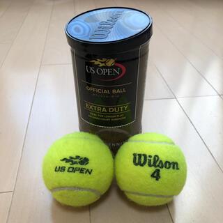 ウィルソン(wilson)の硬式テニス ボール2個セット(ボール)