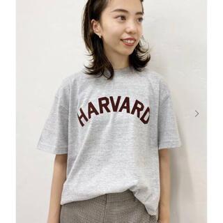 ドゥーズィエムクラス(DEUXIEME CLASSE)の新品タグ付⭐️ GOOD ROCK SPEED HARVARD Tシャツ(Tシャツ(半袖/袖なし))
