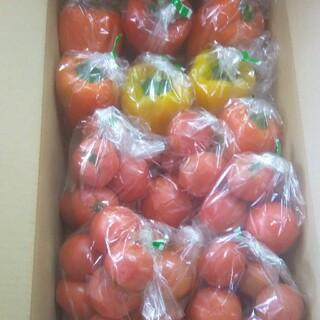 おやき様専用です。静岡県産パプリカ1kg、桃太郎トマト2kg (野菜)