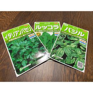 【プランター栽培】イタリアンパセリ30粒、バジル30粒、ルッコラ30粒(野菜)