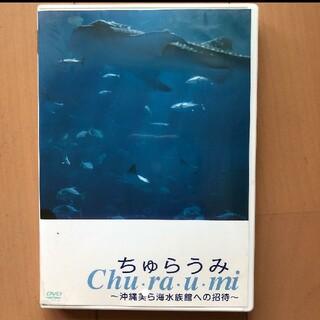 ちゅらうみ 美ら海水族館への招待 DVD(キッズ/ファミリー)