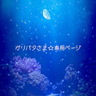 ガリバタ さま ☆ 専用ページ(アート/エンタメ/ホビー)