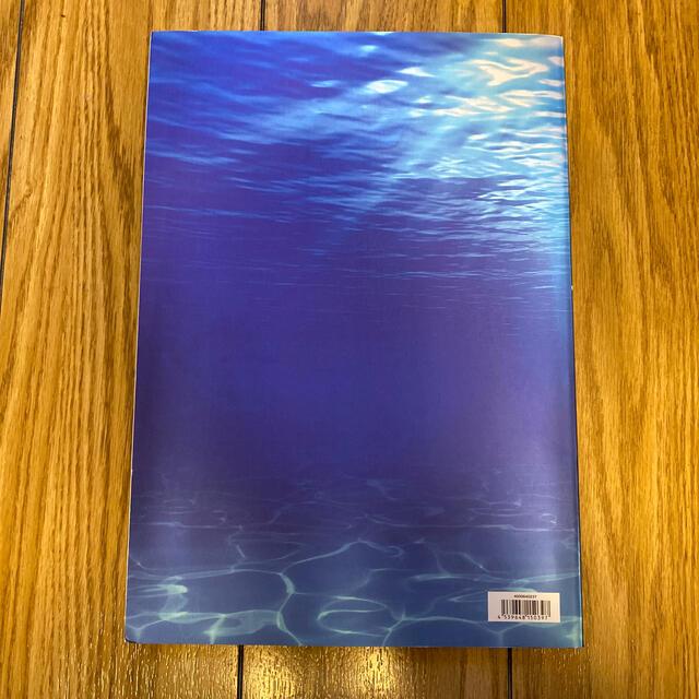 EXILE TRIBE(エグザイル トライブ)の三代目J Soul Brothers BLUE PLANET 写真集 エンタメ/ホビーの雑誌(音楽/芸能)の商品写真