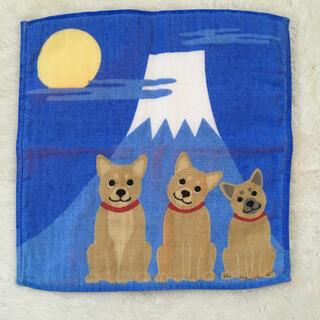 柴犬ハンドタオル(ハンカチ)