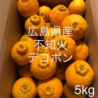 広島県産 不知火 デコポン 5kg(フルーツ)