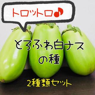 白ナスの種 2種類 白丸ナス 白長ナス 夏野菜 種 ふわとろなす(野菜)