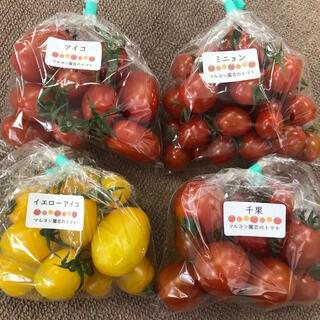 食べ比べトマト4種類(野菜)