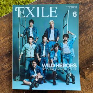 エグザイル トライブ(EXILE TRIBE)の月刊EXILE 2015年 6月 ( ワイルドヒーローズ )(アート/エンタメ/ホビー)