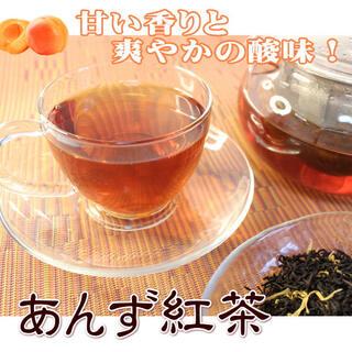 あんず紅茶500g/大容量サイズ あんず 紅茶 ティー(茶)