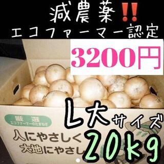 a72 北海道産 減農薬 玉ねぎ L大サイズ 20キロ(野菜)