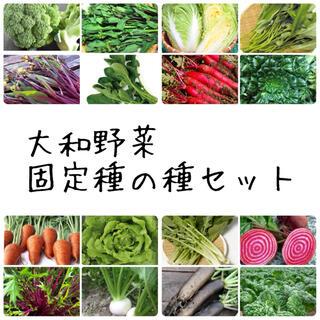 ★大和野菜★固定種の種セット(野菜)