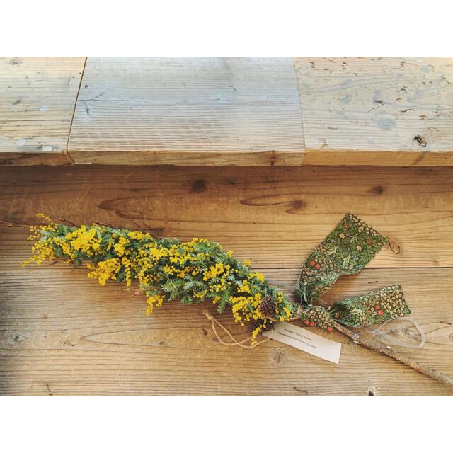 2021 mimosa 4 ミモザスティック William Morris  ハンドメイドのフラワー/ガーデン(ドライフラワー)の商品写真