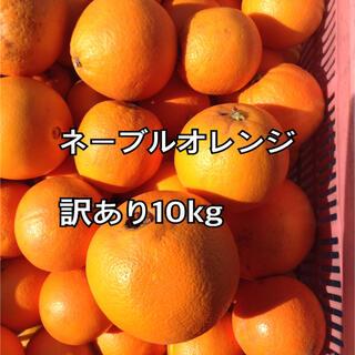 ネーブルオレンジ 訳あり 10kg(フルーツ)