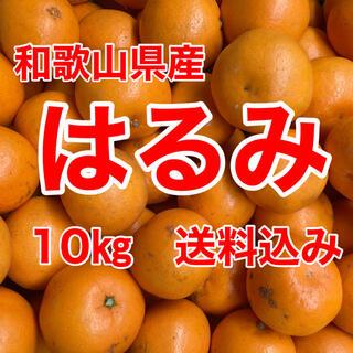 はるみオレンジ 10㎏箱に満杯 送料込み(フルーツ)