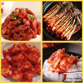 韓国 ゴールドキムチ人気4種(漬物)