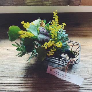 2021 mimosa 1 ミモザの小さな花束とアイアンバスケット(ドライフラワー)