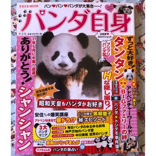 コウブンシャ(光文社)の💕大人気💕 パンダ自身 新品未閲覧(アート/エンタメ)