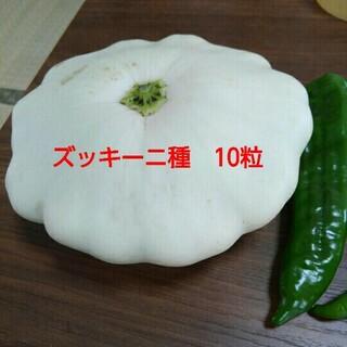 UFO ズッキーニ  ホワイトカスタードの種 10粒(その他)
