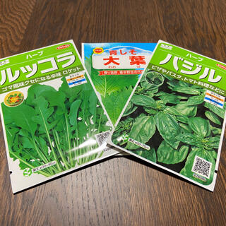 大葉100粒、バジル30粒、ルッコラ30粒、ペパーミント 少々、ストロベリー数g(野菜)
