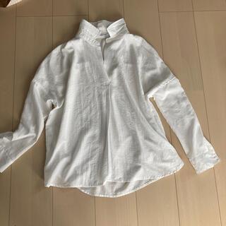 バックナンバー(BACK NUMBER)の春 白シャツ(シャツ/ブラウス(長袖/七分))