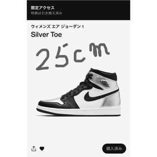 ナイキ(NIKE)のNIKE AIR JORDAN 1 Silver Toe 25cm(スニーカー)