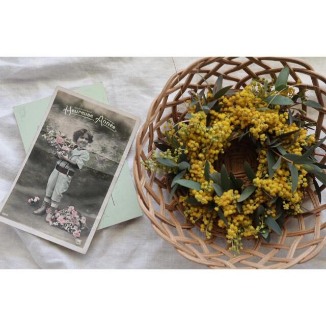 ミモザのリース③ ハンドメイドのフラワー/ガーデン(ドライフラワー)の商品写真