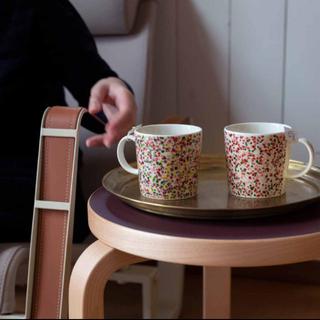 イッタラ(iittala)のイッタラ  ヘレマグ ピンク&テラコッタ 2色セット(食器)