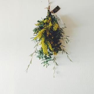 2021 mimosa 8 ギフトミモザ William Morris (ドライフラワー)