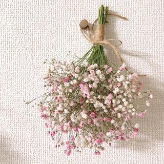 ピンクと白のミックスかすみ草ブーケ(ドライフラワー)