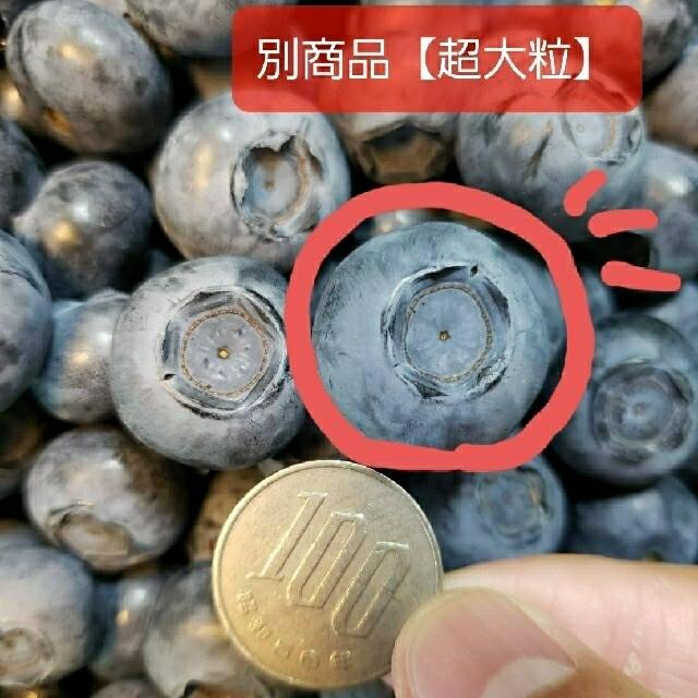 完熟冷凍ブルーベリー【中粒〜大粒】5㌔ 食品/飲料/酒の食品(フルーツ)の商品写真