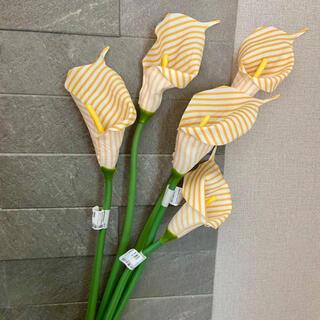 Francfranc - 新品 フランフラン アートフラワー 造花 カラリリー イエロー 黄色 5本セット
