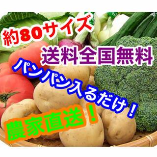 約80サイズ農家直送野菜詰め合わせパンパン入るだけ!限定セール中!(野菜)