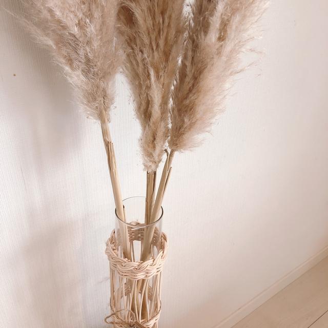 パンパスグラス 100cm3本セット ハンドメイドのフラワー/ガーデン(ドライフラワー)の商品写真