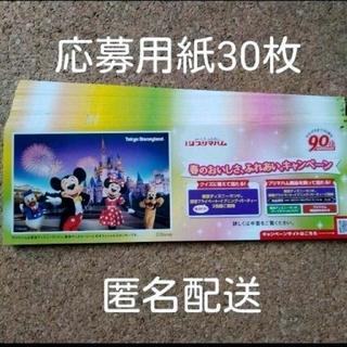 ディズニー(Disney)のプリマハム ディズニーランド貸切り応募用紙(その他)