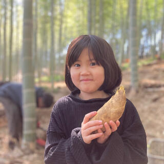 早掘り筍 4kg(野菜)