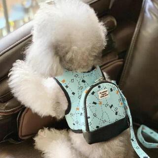 リュック型リード☆水色の模様 Sサイズ 新品 SALE中❣️(犬)