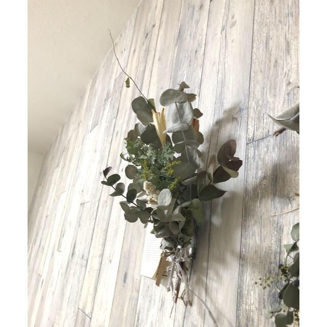 Natural 蕾ミモザとユーカリのドライフラワースワッグ ハンドメイドのフラワー/ガーデン(ドライフラワー)の商品写真