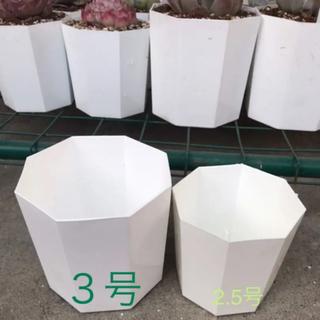 八角プラ鉢 3号 5個  白 ホワイト(その他)