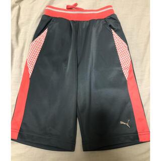 プーマ(PUMA)のサイズ140 プーマ ハーフパンツ トレーニングパンツ(パンツ/スパッツ)