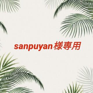 sanpuyan様専用 カラフルな ウクレレ用 ナイロン弦 他1点(その他)