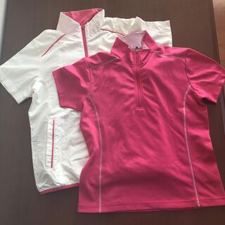 IGNIO ゴルフウェアー 半袖シャツ 半袖ジャンパー 2枚セット