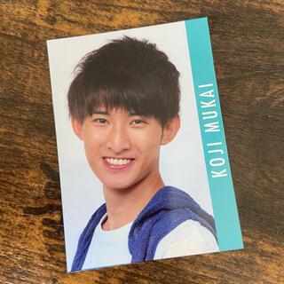 向井康二 データカード(アイドルグッズ)