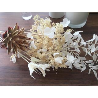 ドライフラワー プリザーブド インテリア selectセット花瓶 花束 韓国(ドライフラワー)