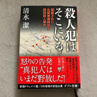 殺人犯はそこにいる 隠蔽された北関東連続幼女誘拐殺人事件(文学/小説)