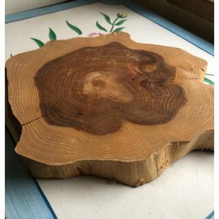 木の鍋敷き 木 年輪 木製品(置物)